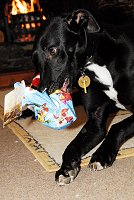 Opening his present